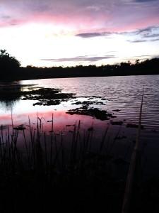 danau belakang kompleks di sore hari